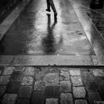 Le champ des possibles (Guillaume Noury)